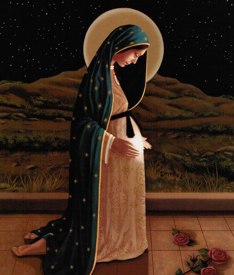Đức Mẹ Vô Nhiễm Như Sen Giữa Bùn